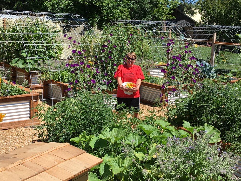 Veggie garden August 2016.