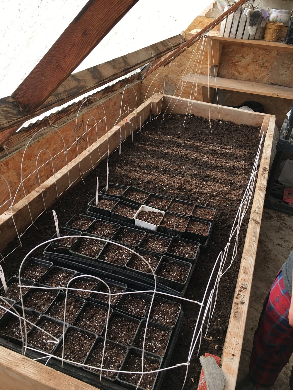 Greenhouse prep work starts in February and March.