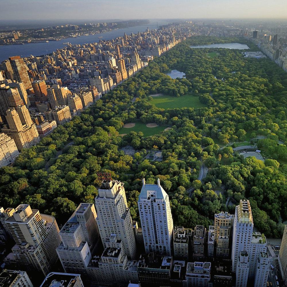 Central Park Photo Walk.jpg