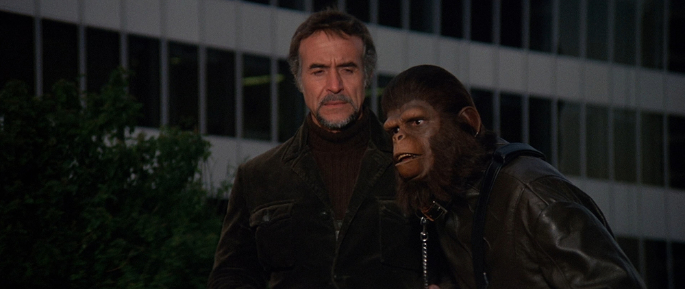 But hey, to offset that, we've got a chimp in a leather outfit!