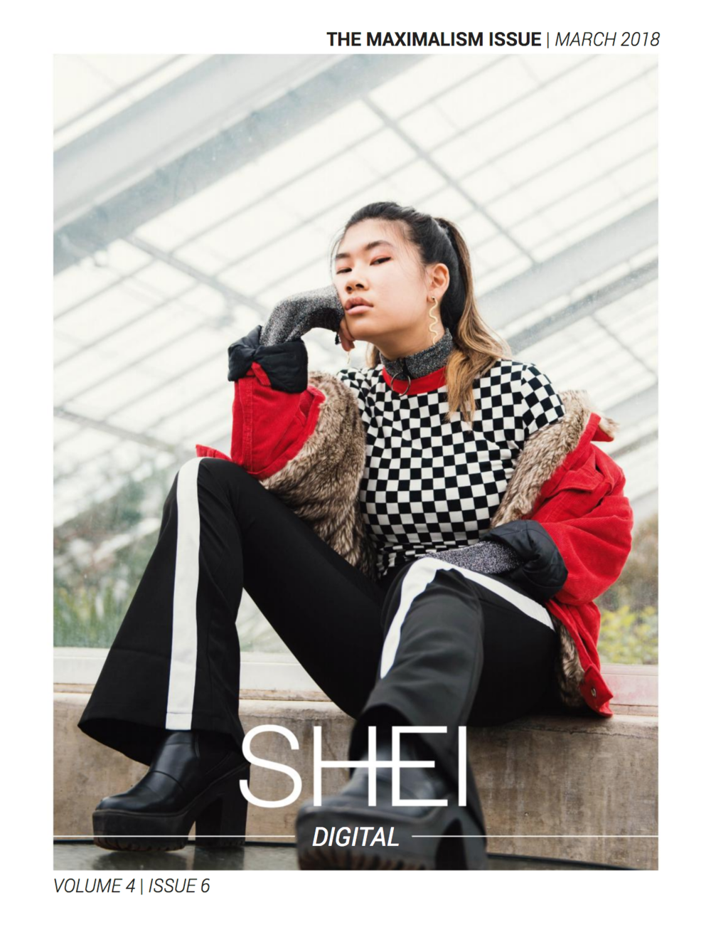 SHEI Digital // Vol. 4 Iss. 6