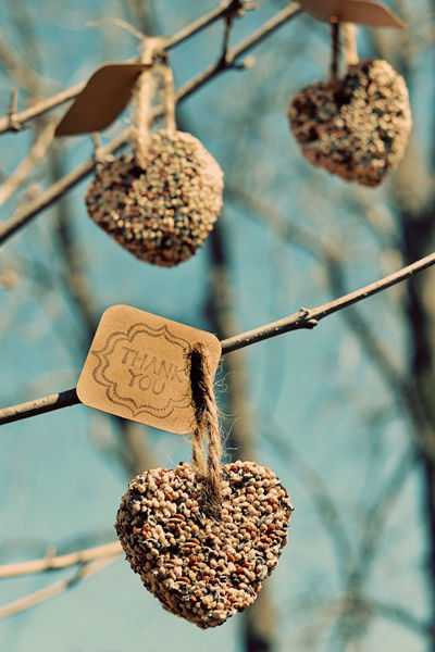 heart birdseed ornaments