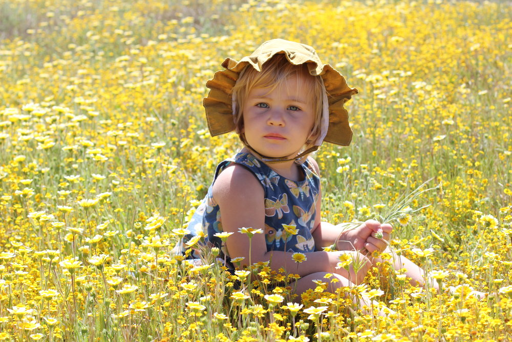 ruffle sunbonnet and yellow flowers