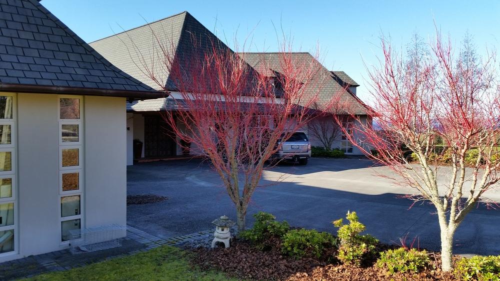 Architectural Design - Waikato