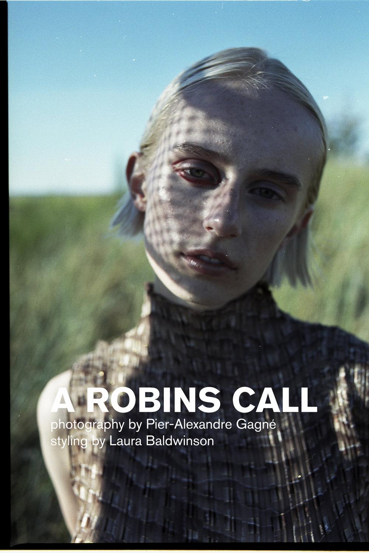 robins-call-pier-alexandre-gagne