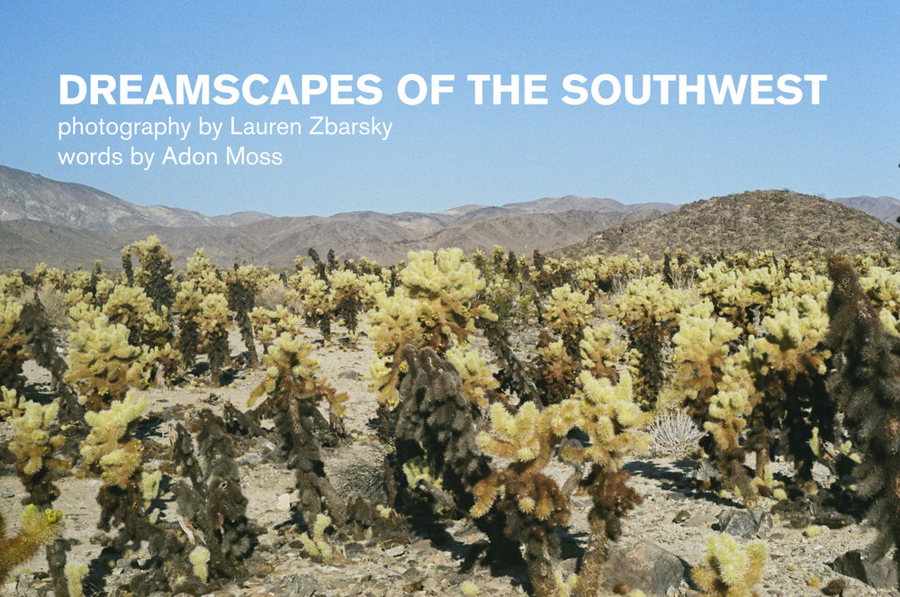 dreamscapes-of-the-southwest