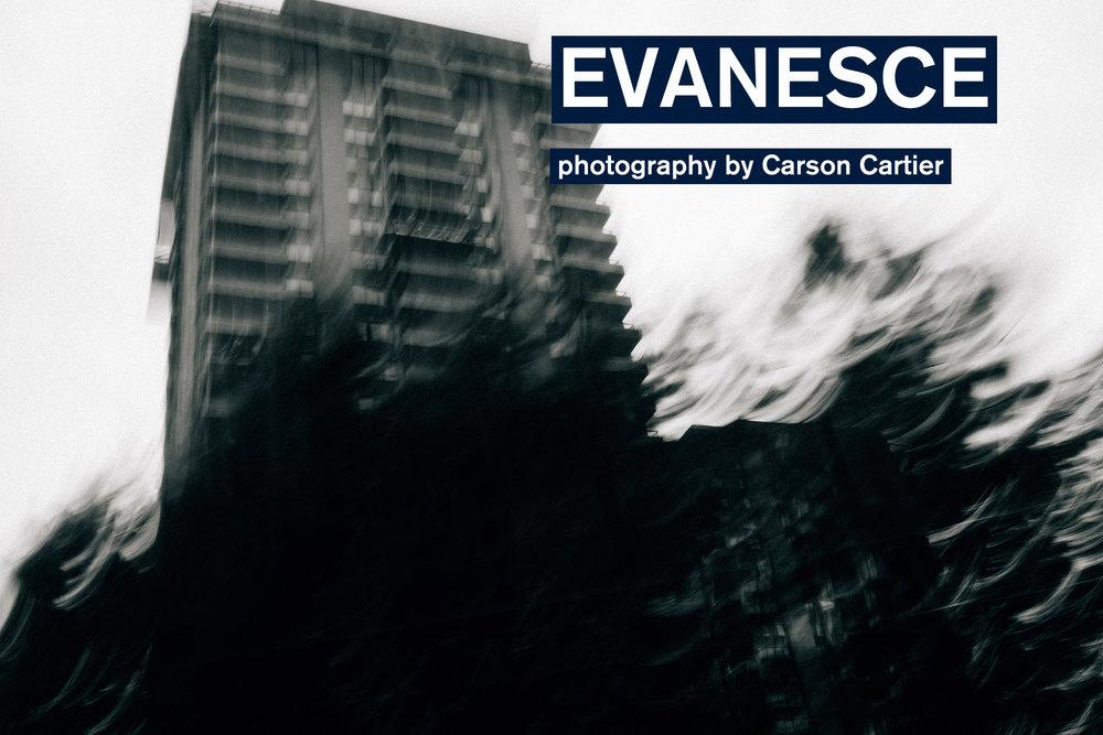 evanesce-carson-cartier