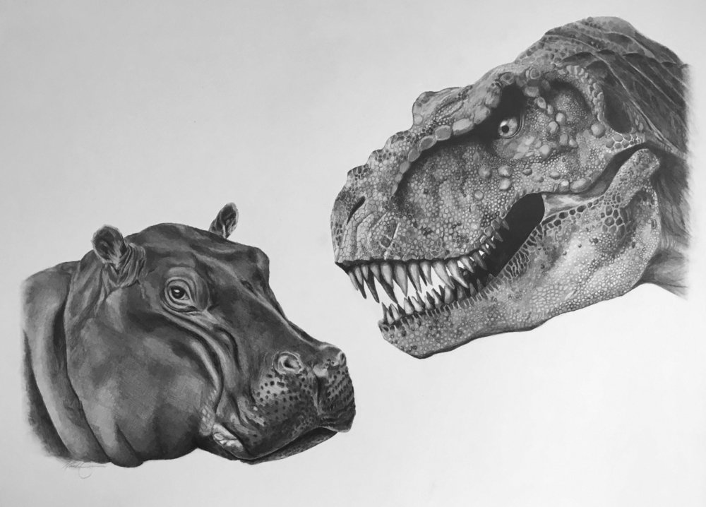 Hippo and Dino , 2017