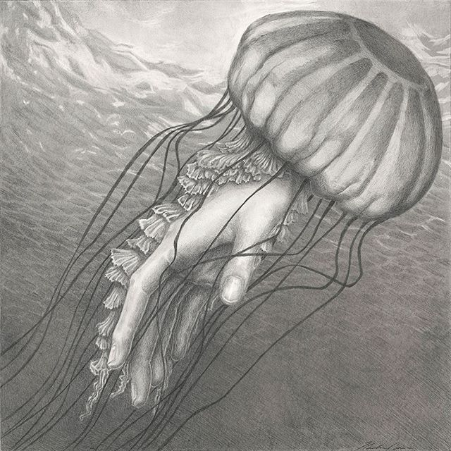 """Tentaculara II"" graphite on panel. showing at Offroad Productions Jan 20 6-8. 2891-B Trades West Road, Santa Fe. Open by appointment Jan 22-27."