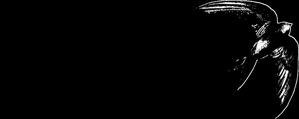 swift_logo_black_transparent.png