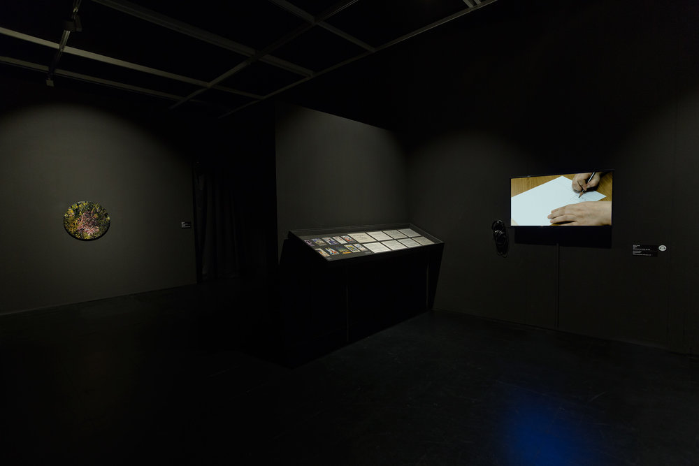 Installation view: Buk Seoul Museum of Art,  Asian Diva: The Muse and the Monster,  Korea. Photo credit: Byunghun Min/Halo Studio.