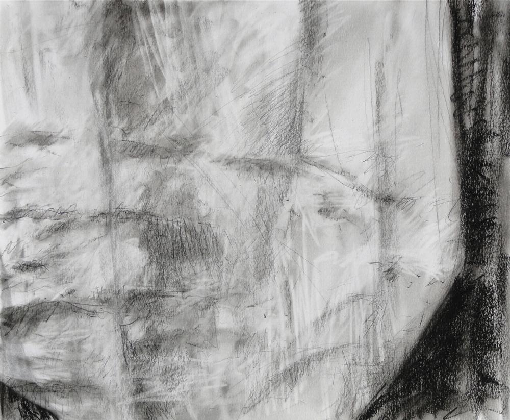 """14x17"""" 2012 charcoal"""