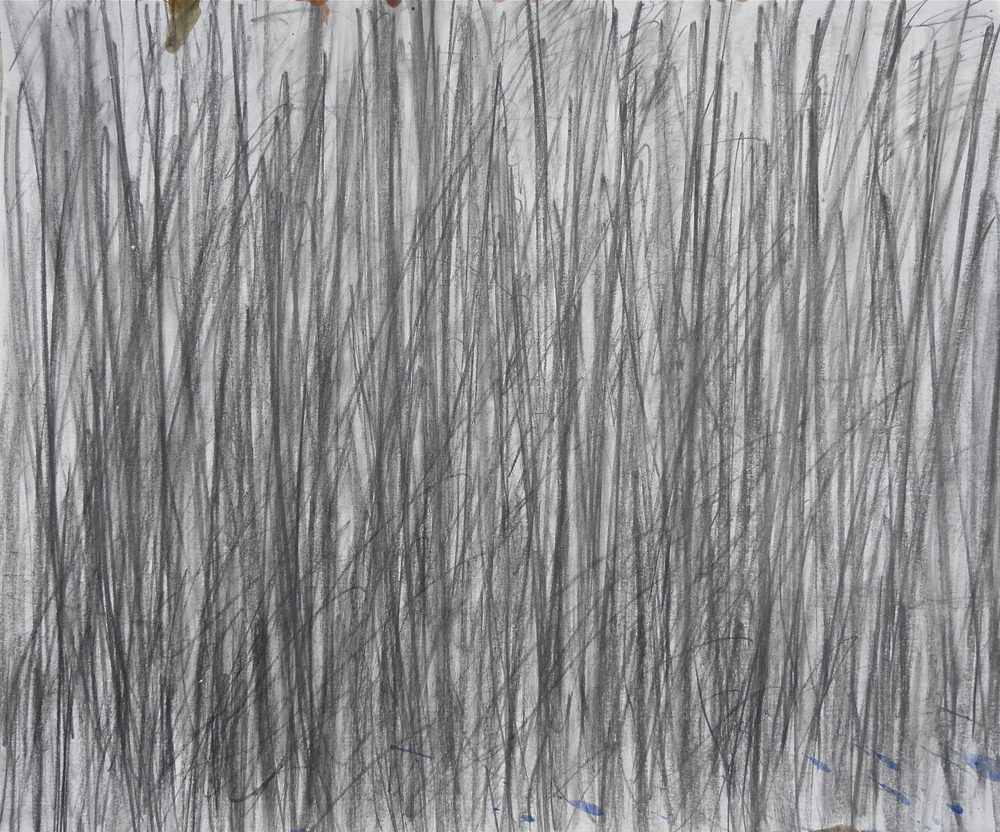 "14x17"" pencil 2008"
