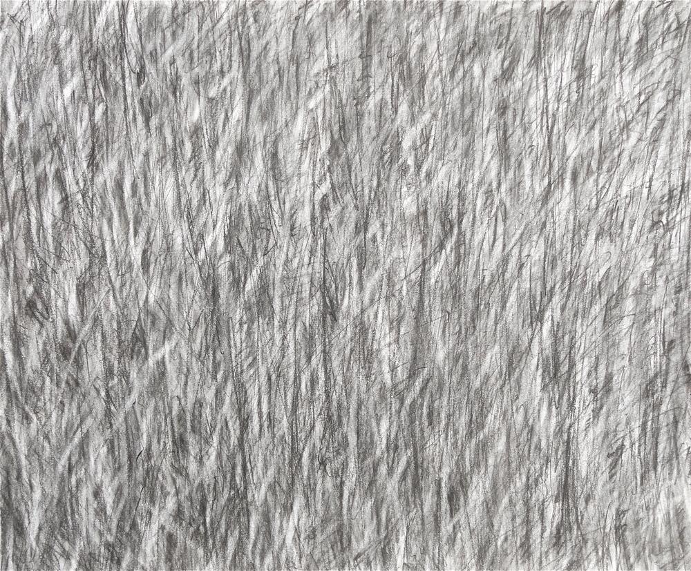 """14x17"""" charcoal 2008"""