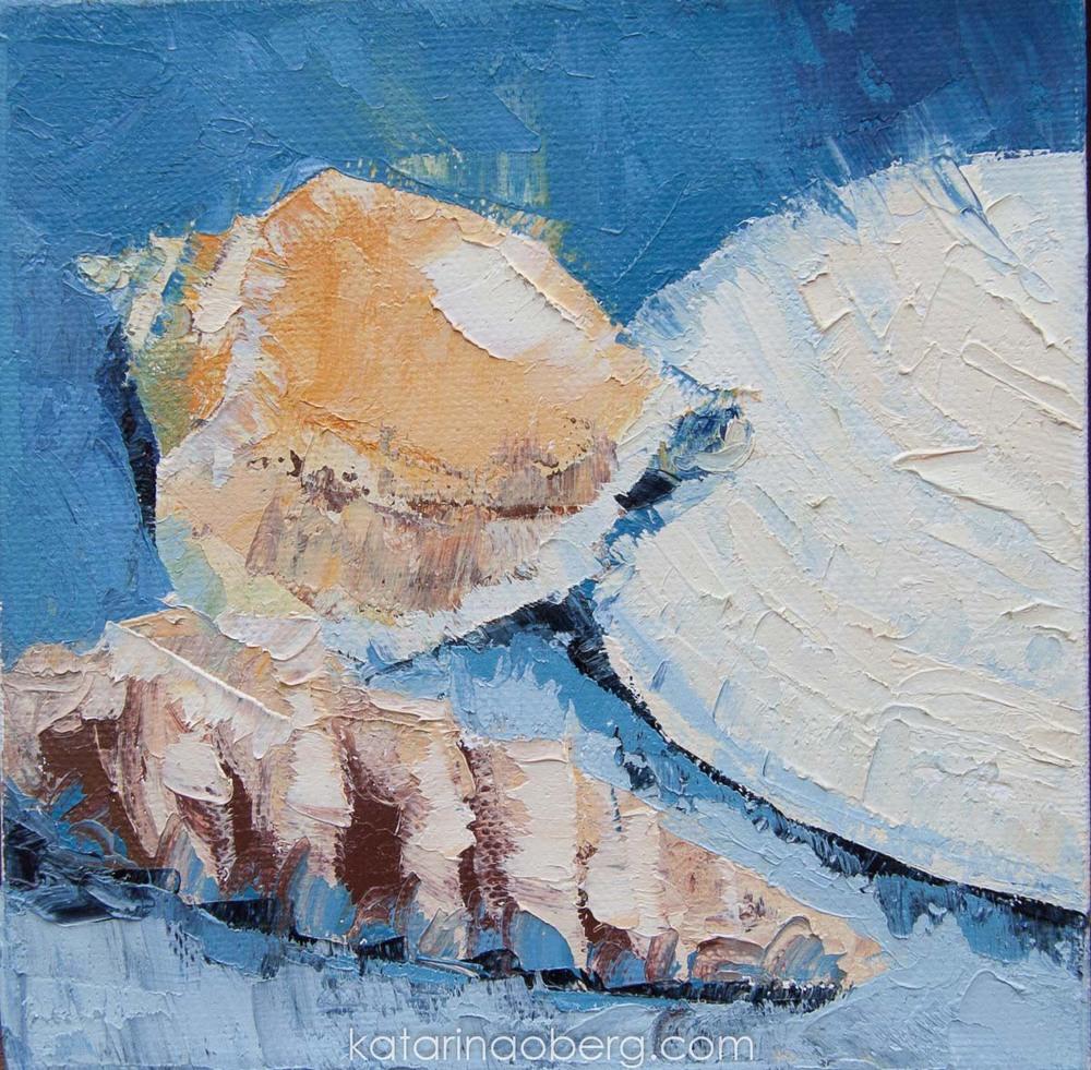 Shells I