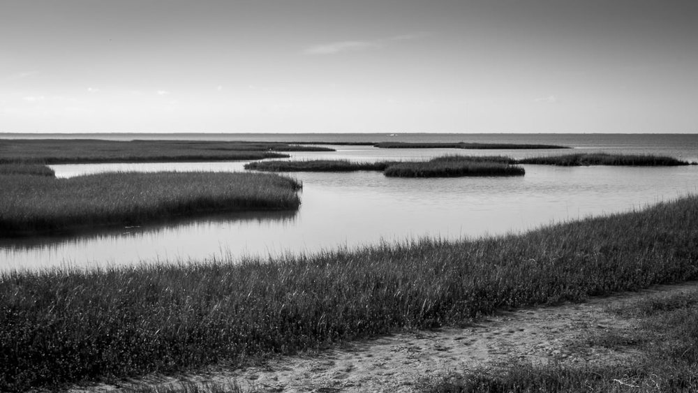 Pirate's Cove, Galveston