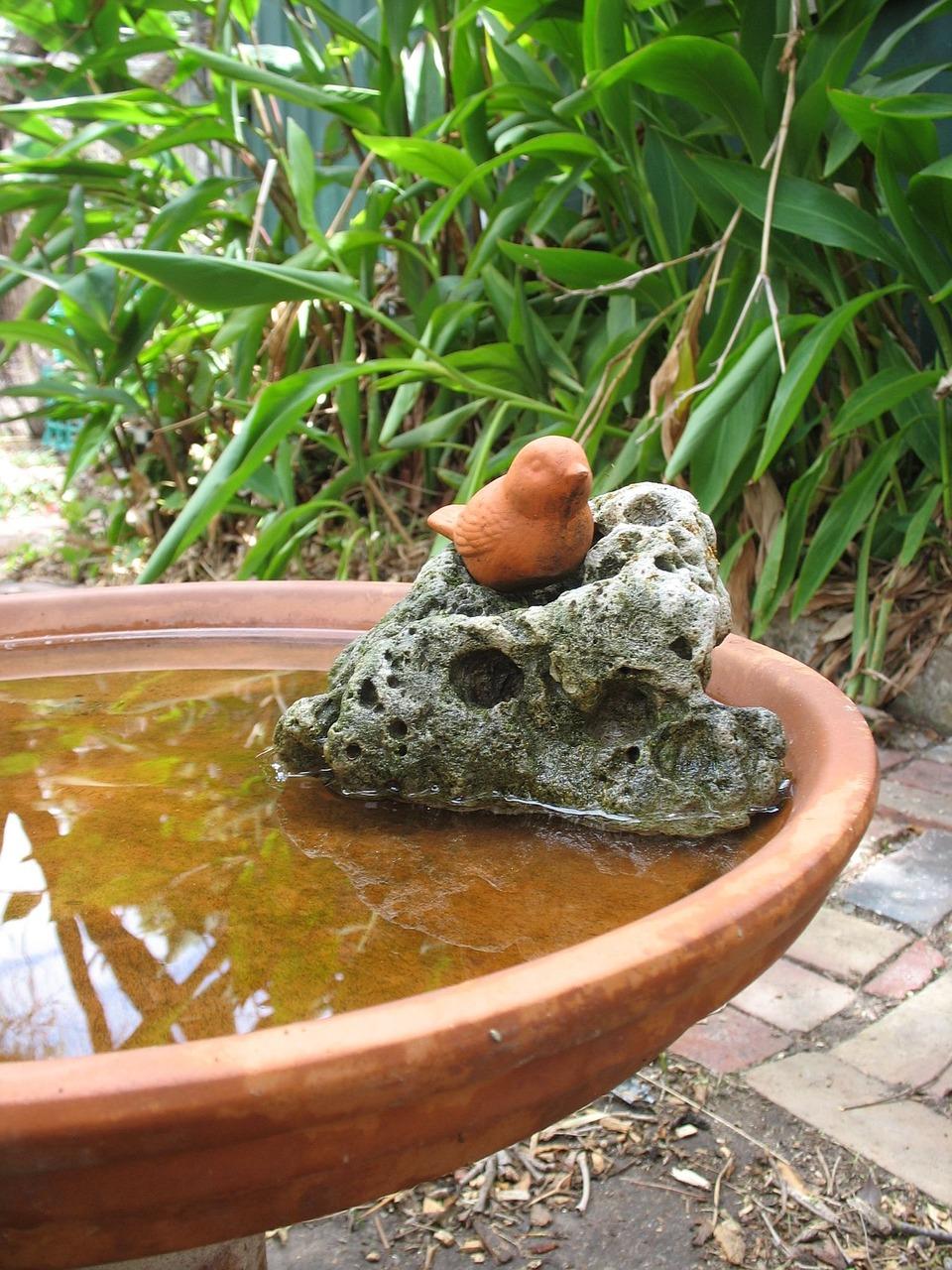 garden-173035_1280.jpg
