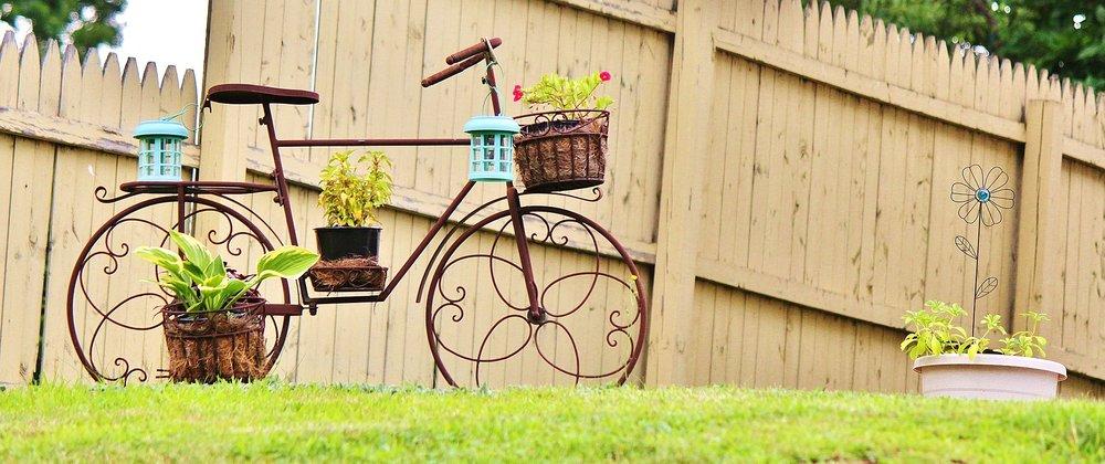 bike in garden.jpg