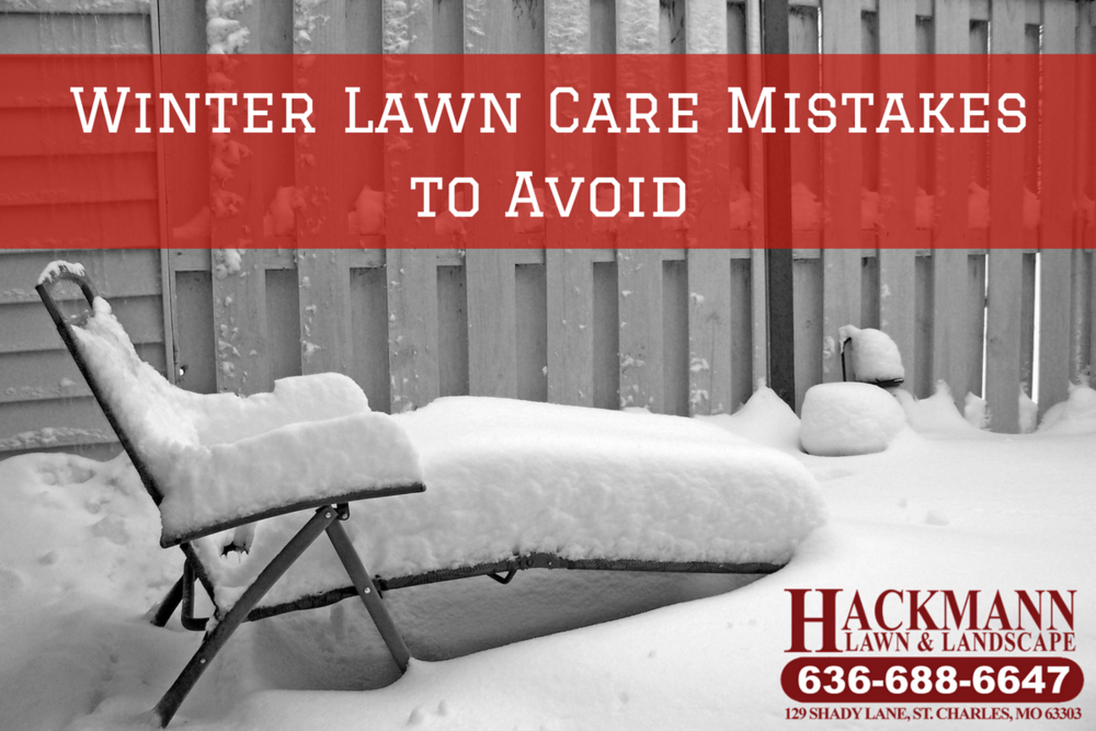 winter lawn care st louis st charles snow removal services