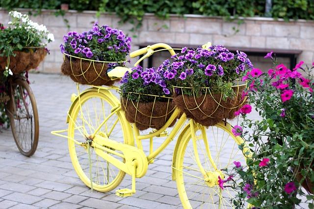 bike-1235960_640.jpg