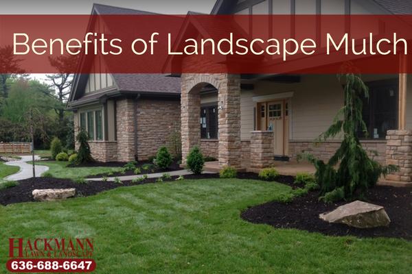Benefits of Landscape Mulch.png
