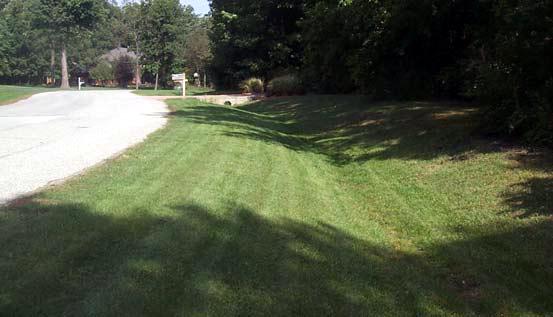 Grass_lined_channel_NRCS.jpg