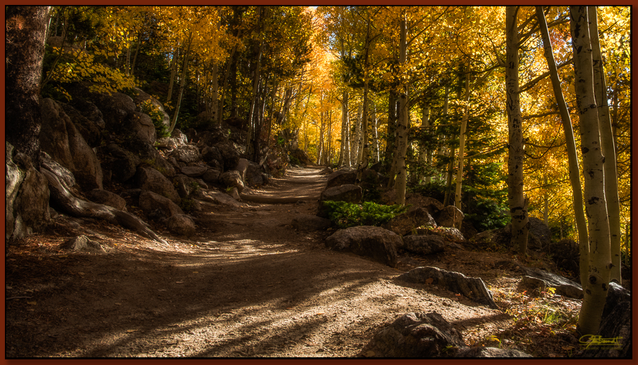 """""""Golden Trail"""" ©2016 Jon S. Berndt     Above Bear Lake in Rocky Mountain National Park, this trail leads towards Bierstadt Lake a couple of miles away. The many yellow leaves acted as a filter and gave the trail a magical, warm hue. To see a larger version and for purchase options,  click here ."""