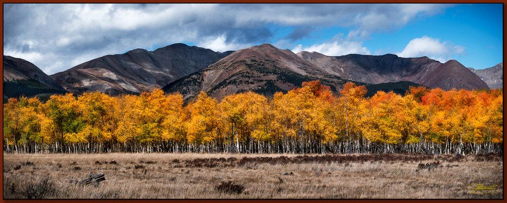 """""""Classic Colorado Aspens"""" ©2016 Jon S. Berndt"""