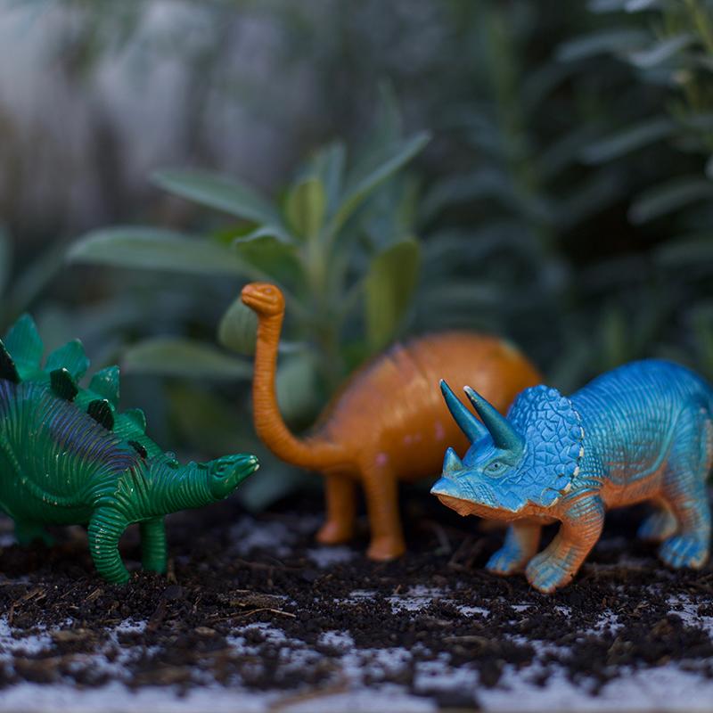 PCF-DinoFairyGarden-sq.jpg