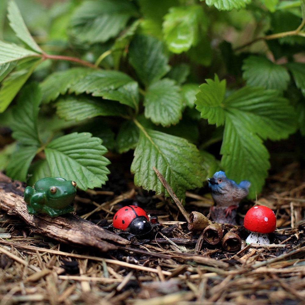 kids-creature-garden-pcf-sq.jpg