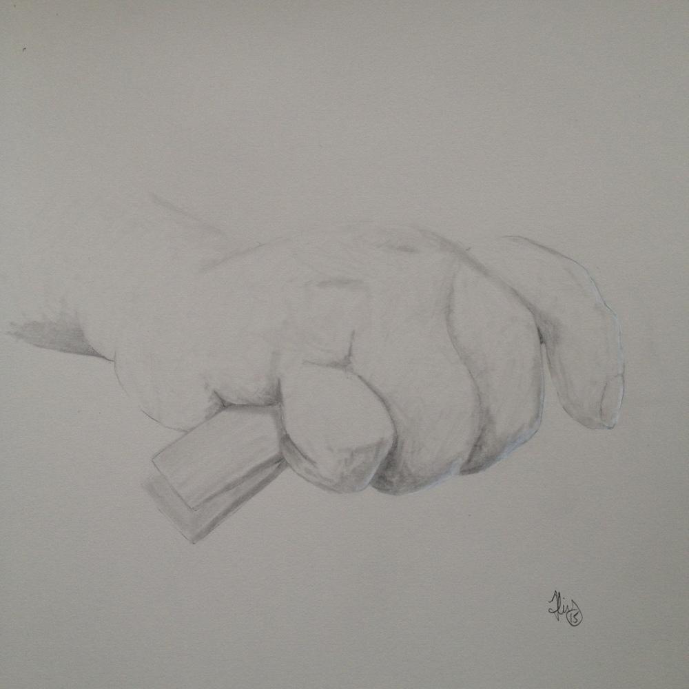 Hand study : Rex i
