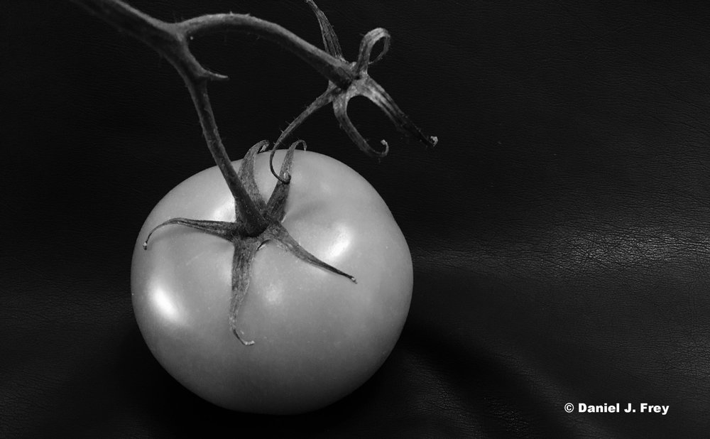 Tomato, Daniel J Frey, Forces Film