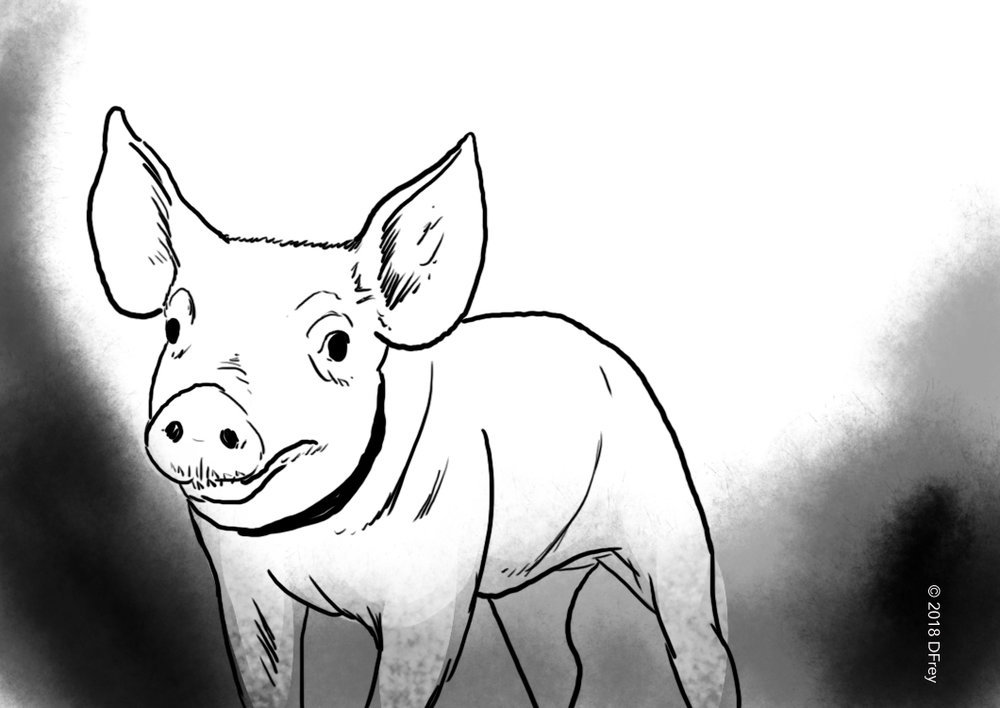 bb-cartoon-073.jpg