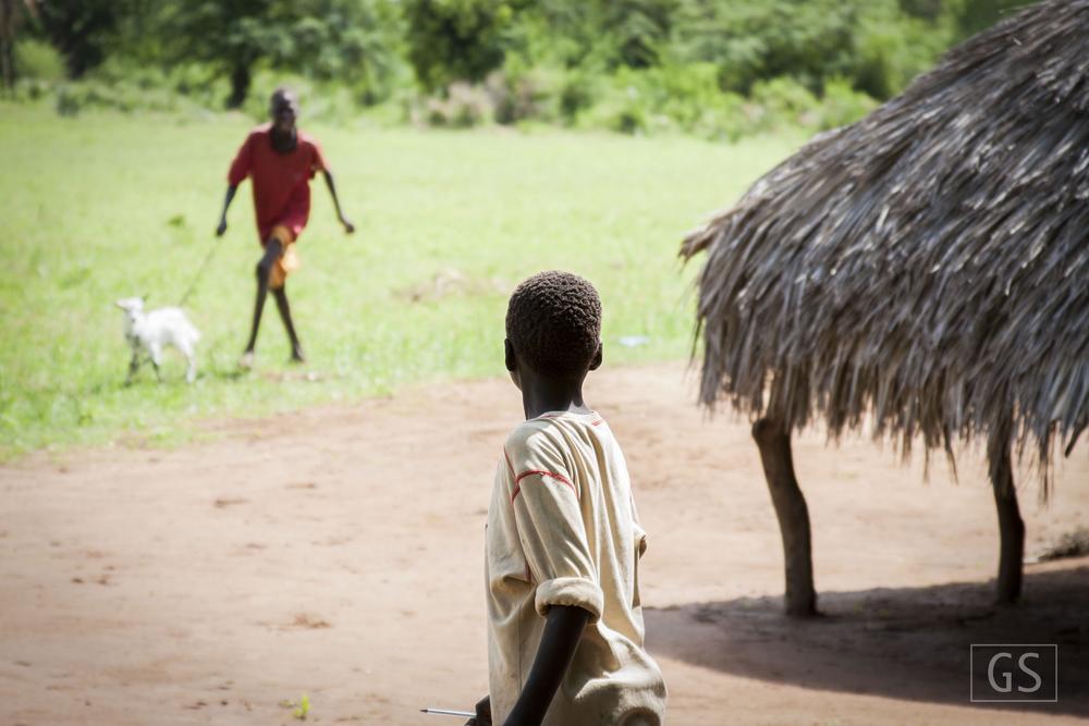 Animais são parte do pagamento da escola. Anualmente os estudantes devem pagar uma quantia e na maior parte das vezes o mesmo é feito com cabras ou vacas.