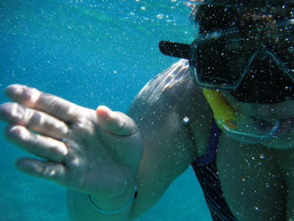 the plus size backpacker snorkeling