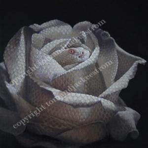 """""""Snake Rose"""" by Jackee Sandelands-Strom"""
