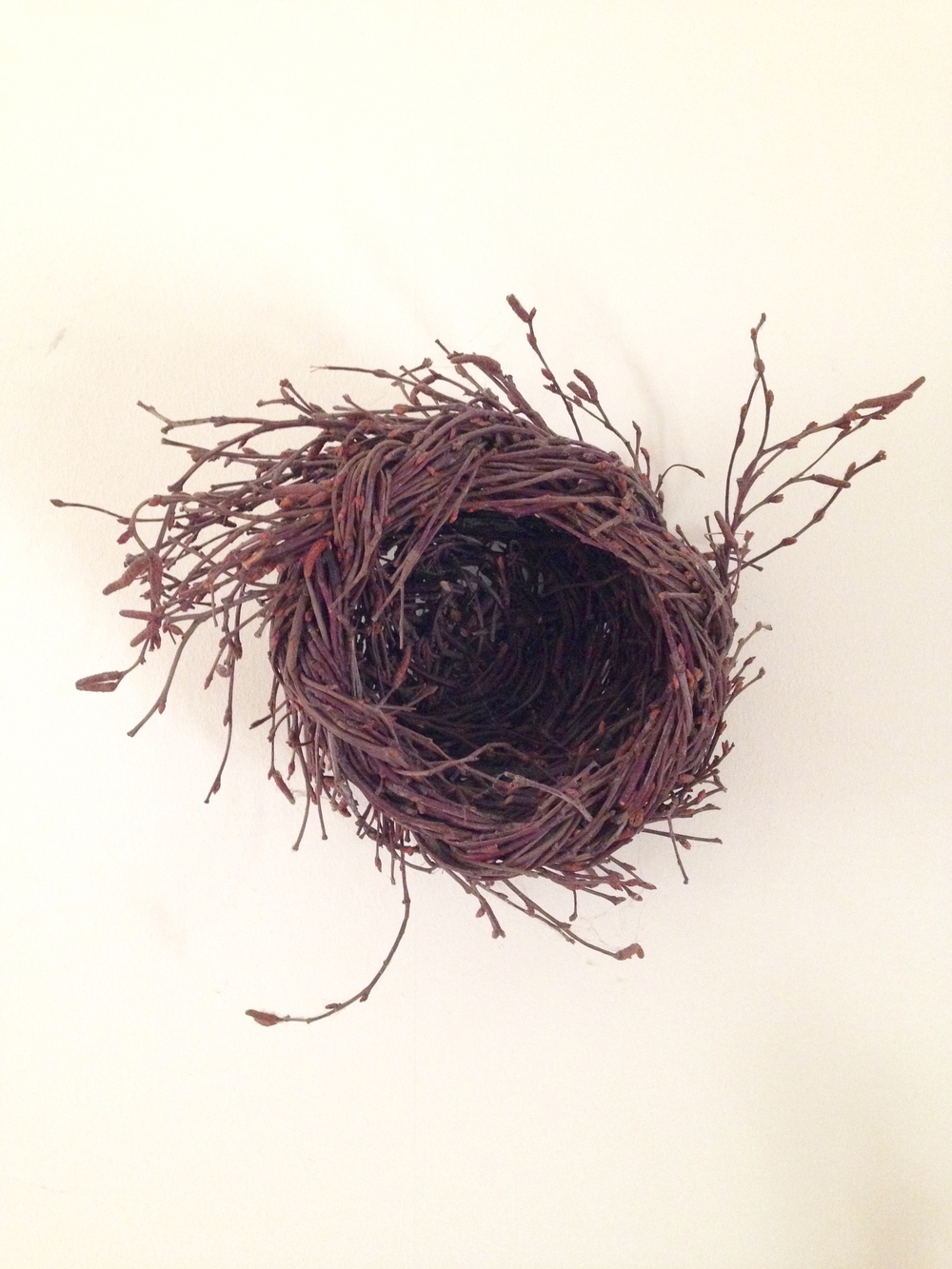 Joe Hogan Nest