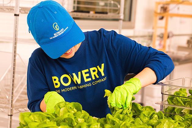 Bowery-farm-ctw-640.jpg