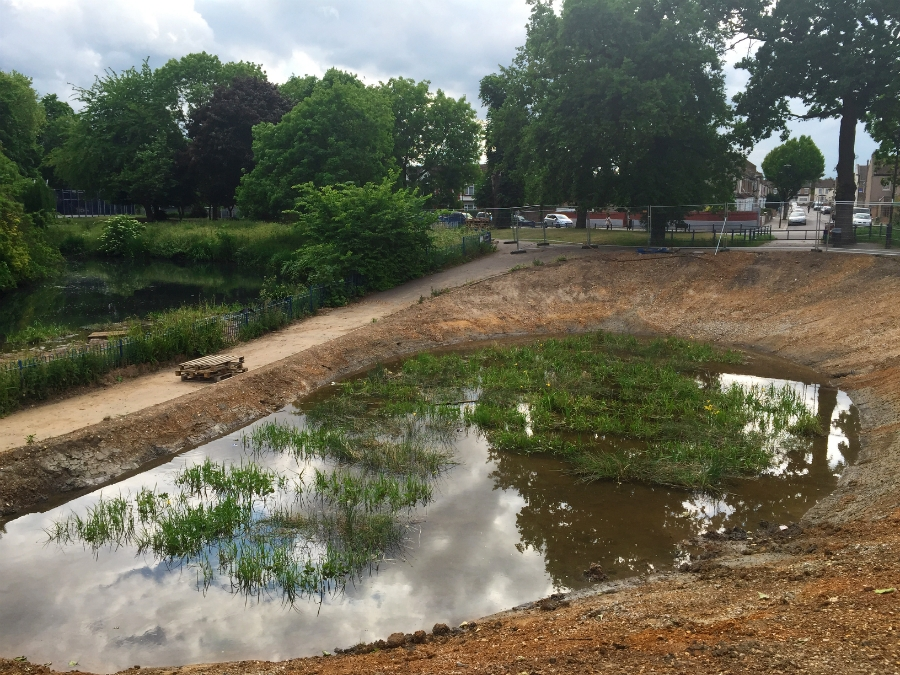 The wetland construction has been completed, and planting has already begun