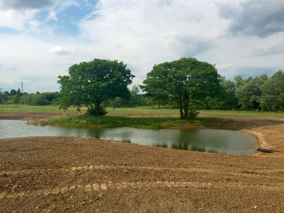 Reshaping works have brought an elegant and unified aesthetic to the ponds across the course.