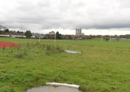 The field prior to reconstruction works