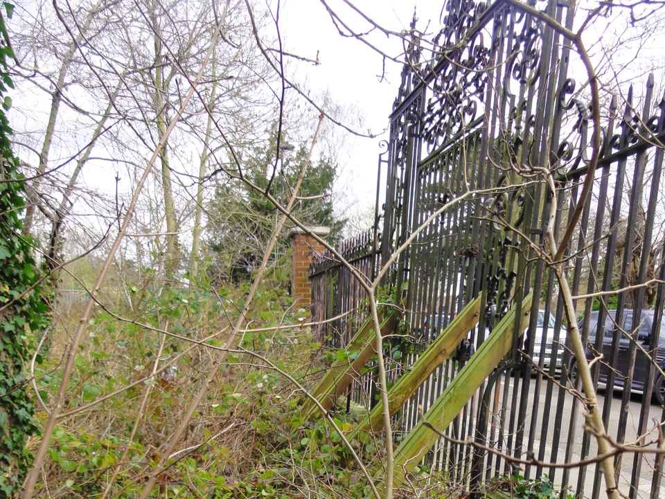 The area adjacent to the park's historic gates will require particular care for the installation of drainage relief channels amongst such tight woodland.