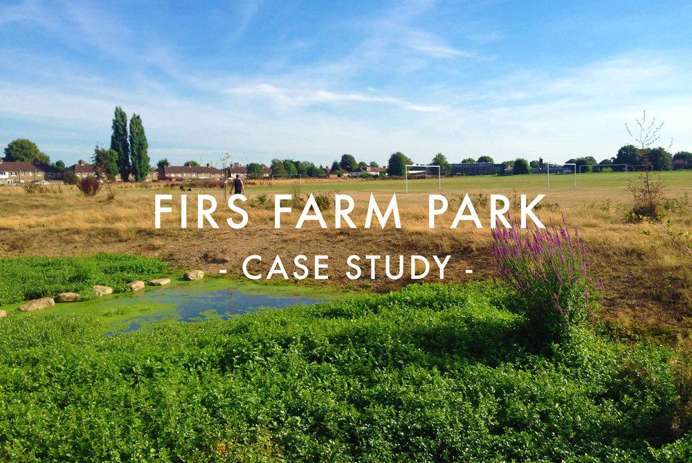 FIrs Farm Park - Wetlands Construction & River Restoration Case Study