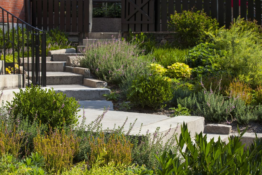 Searle Design Group, LLC is a team of dedicated, experienced landscape architects who believe in more than the bottom line. We believe in making great places that enhance the communities they are a part of... providing rich outdoor spaces that encourage engagement with the natural environment.