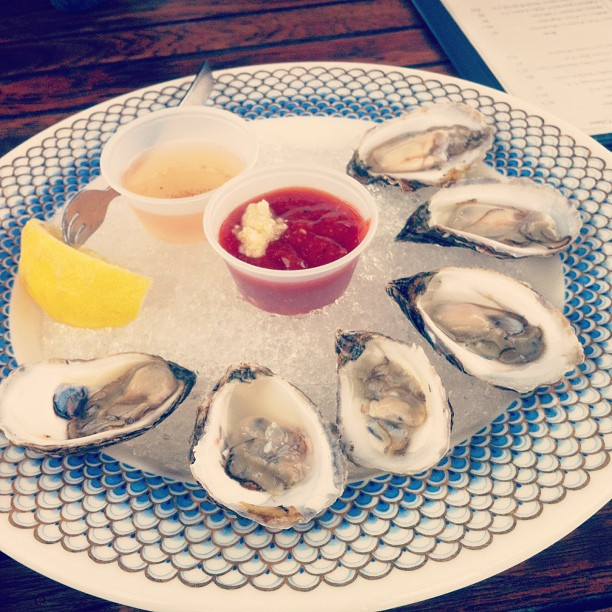 salthouse oysters