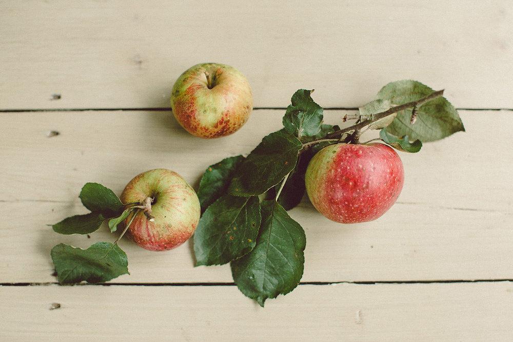 Autumn_Apples01