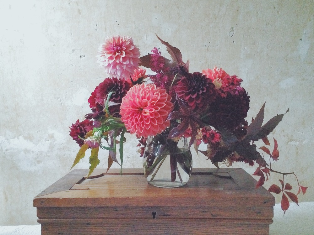 Crimson Dahlias