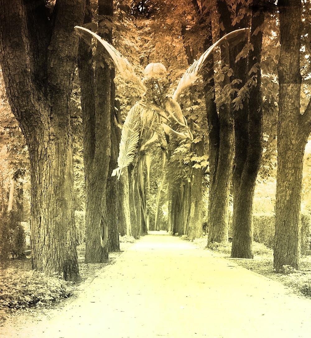 angel-956134_1920.jpg