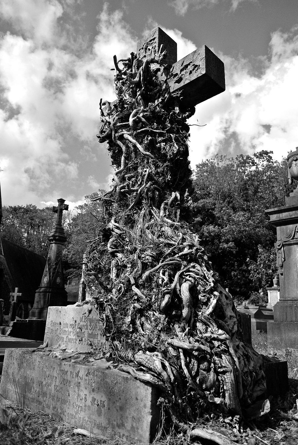 cemetery-458337_1920.jpg