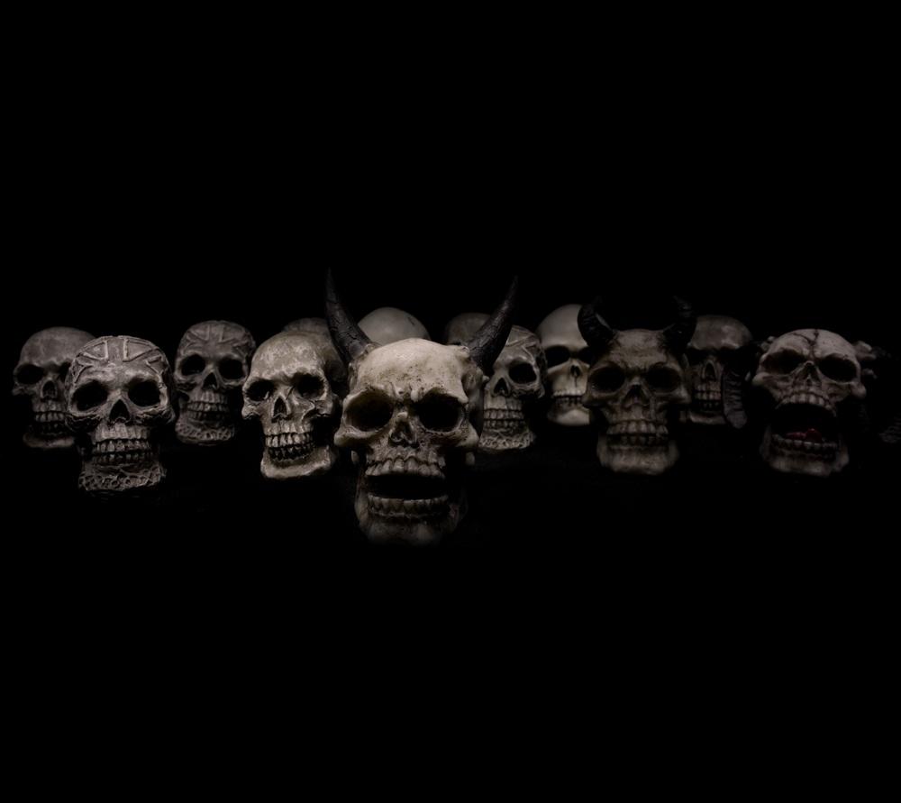 skulls-623532.jpg